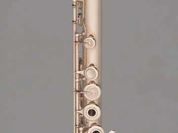 Flute (Boehm system)