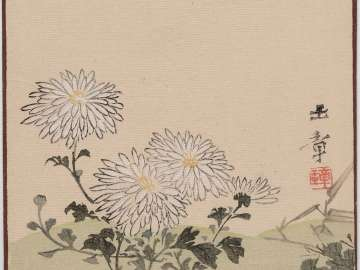 Chrysanthemums (Kikuka) from the series Sunbikai Cards by Gyokusho (Gyokusho sunga)