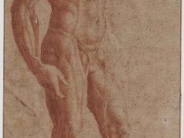 Study of a Male Nude, Ecorché
