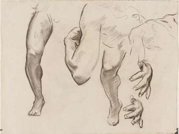 Leg, Arm and Hand Study for Architecture, Painting and Sculpture (Sculpture); Drapery studies (verso)