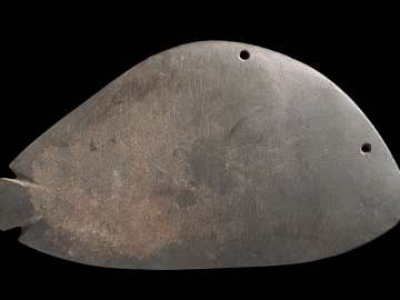 Fish-shaped palette