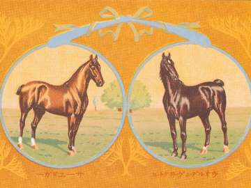 Horses: Walden Victor and Sir Edgar