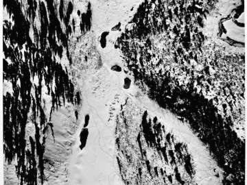 Moose Tracks Near Edge of Kahiltna Glacier, Alaska
