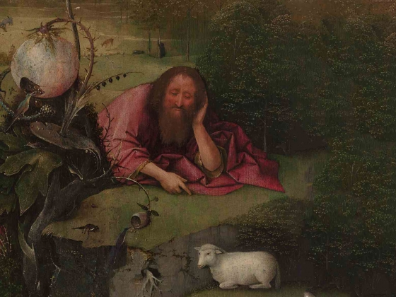 Film Still from The Curious World of Hieronymus Bosch