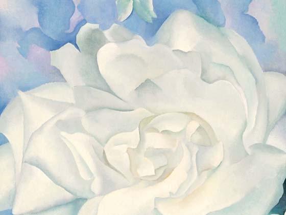 Georgia O'Keefe, White Rose with Larkspur No. 2, 1927