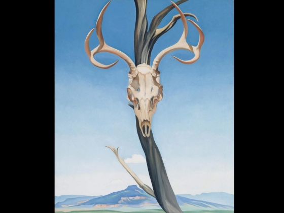 Deer's skull with pedernal against mountainscape