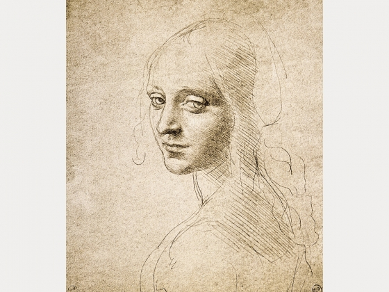 the life and arts of leonardo da vinci Year by year discussion of leonardo da vinci's life and art.
