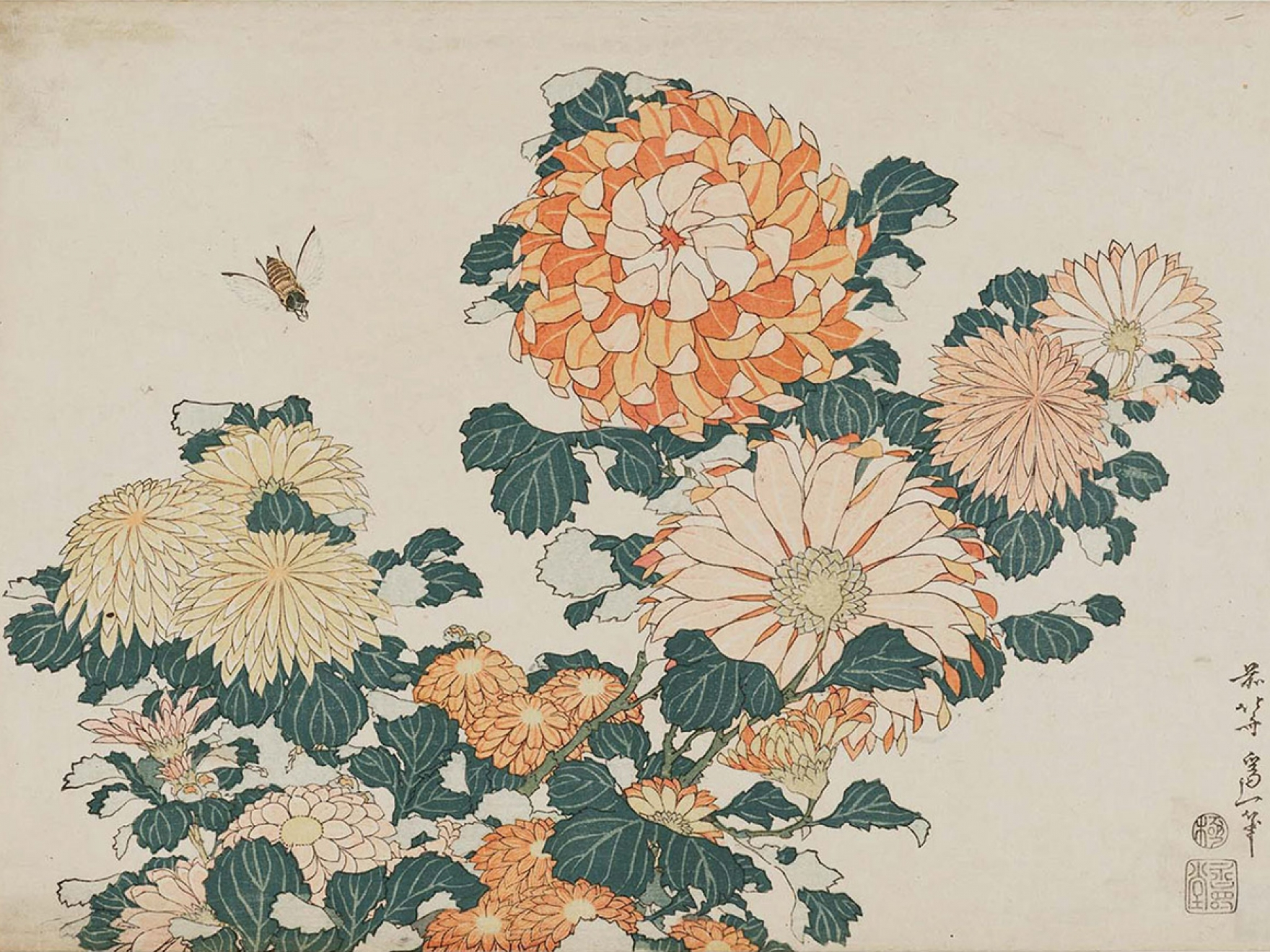 Color in japanese art - Katsushika Hokusai Chrysanthemums And Horsefly From An Untitled Series Known As Large Flowers Japanese Edo Period About 1833 34 Woodblock Prin