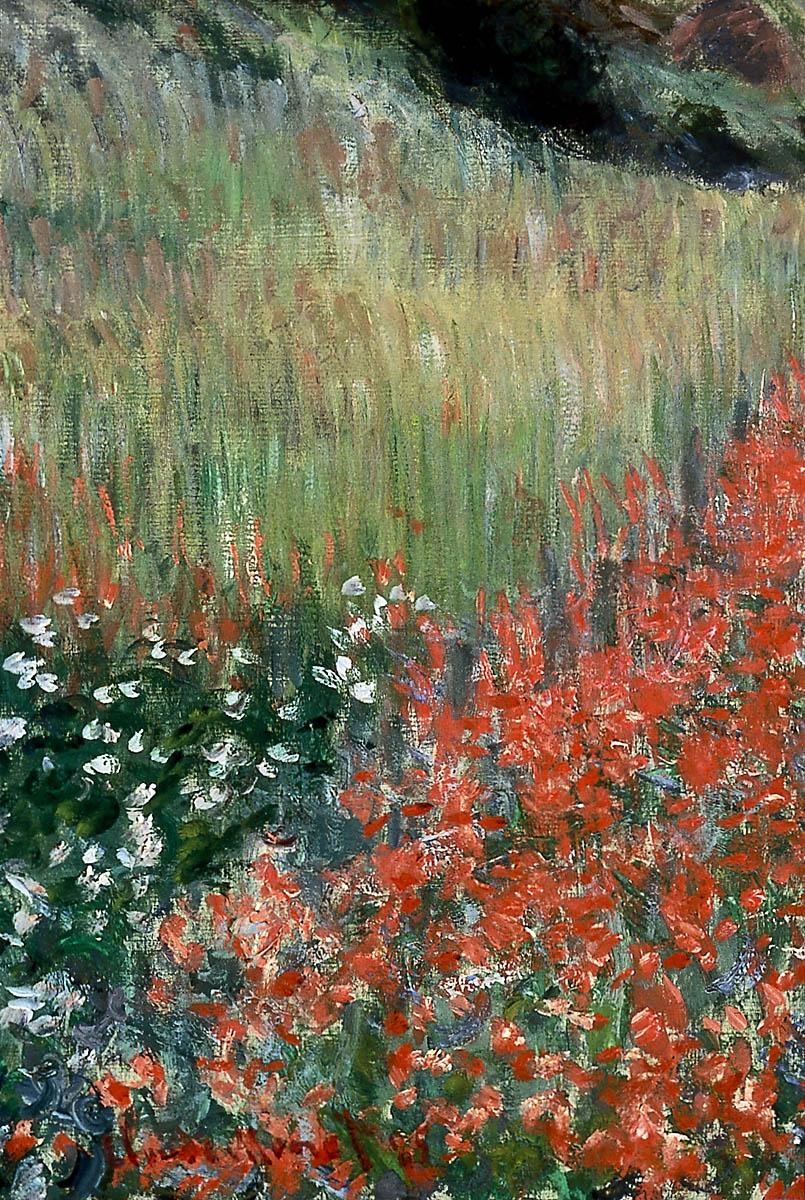 Poppy Field in a Hollow near Giverny   Museum of Fine Arts, Boston
