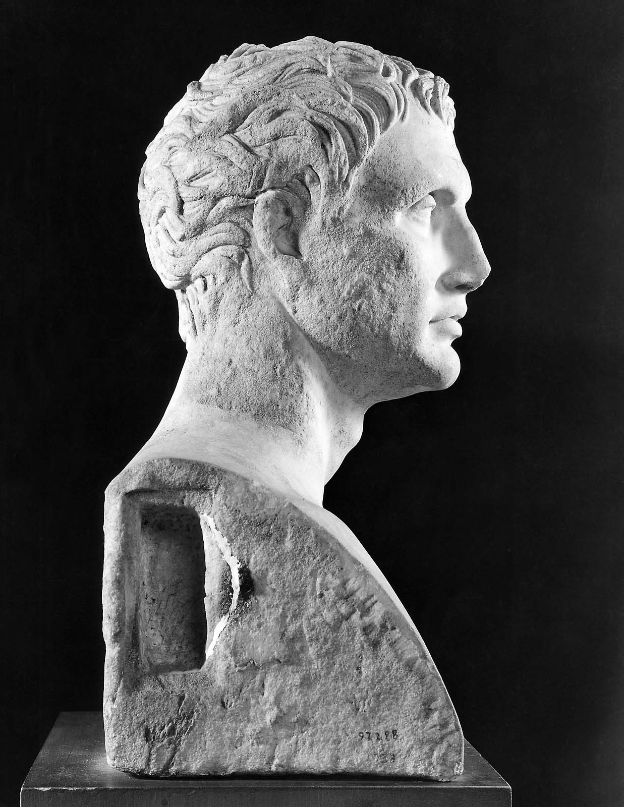 Herm Bust Of Menander Museum Of Fine Arts Boston