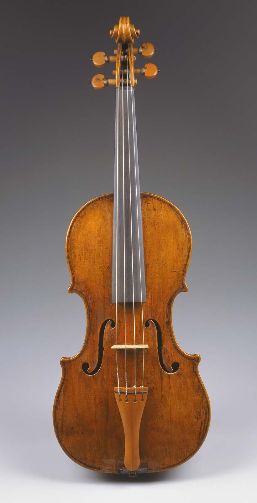 Bowed String Instruments | Museum of Fine Arts, Boston