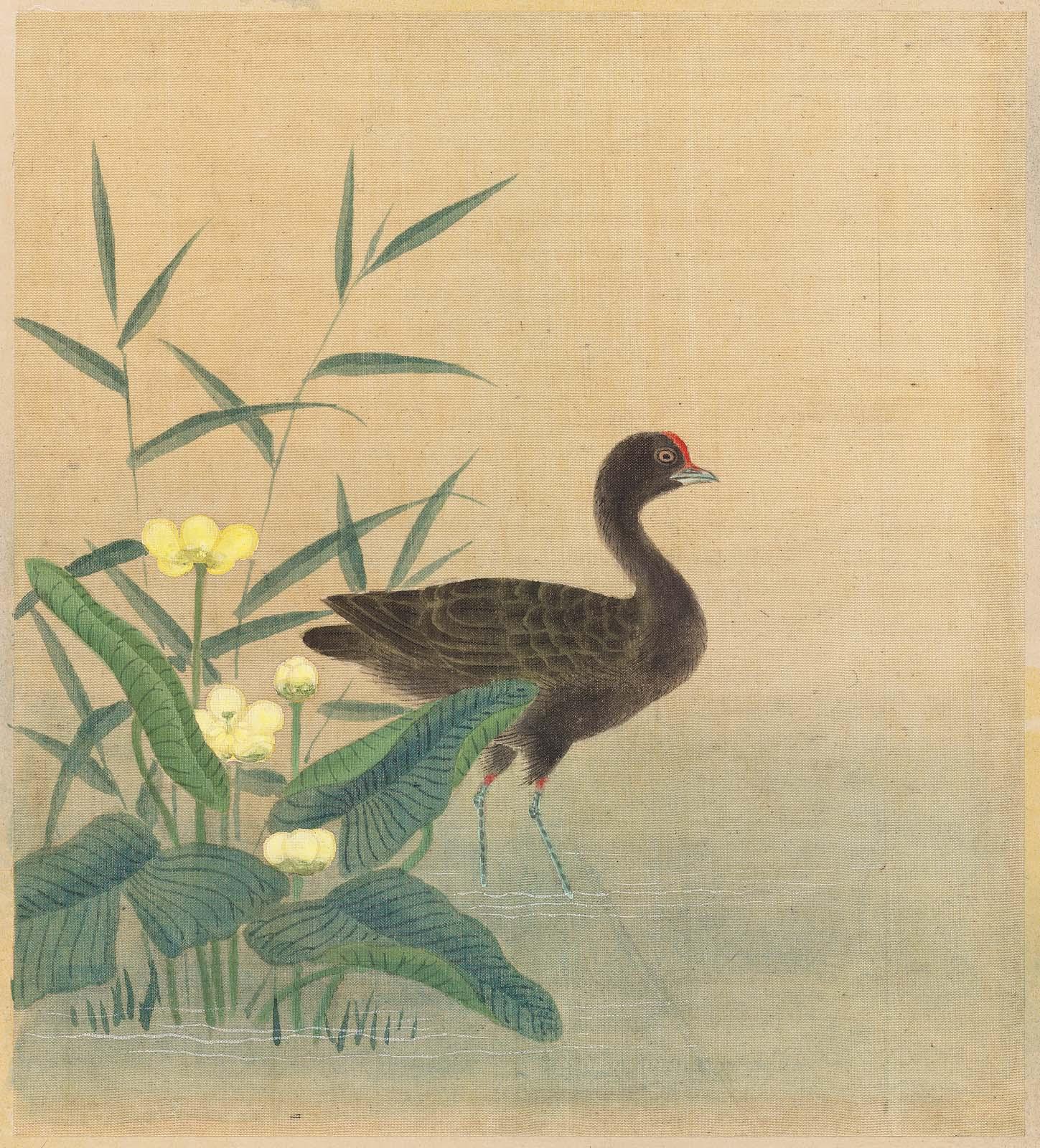 MFA Images: Birds | Museum of Fine Arts, Boston