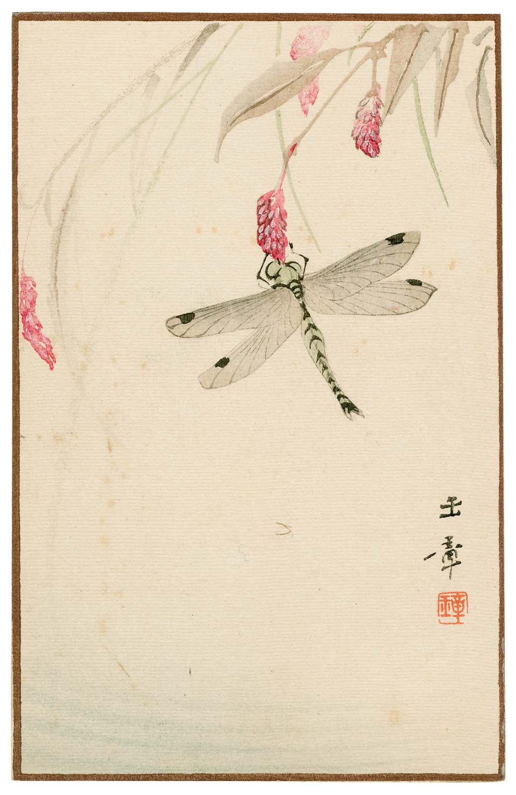 Dragonfly Akitsu From The Series Sunbikai Cards By Gyokusho Sunga Japanese
