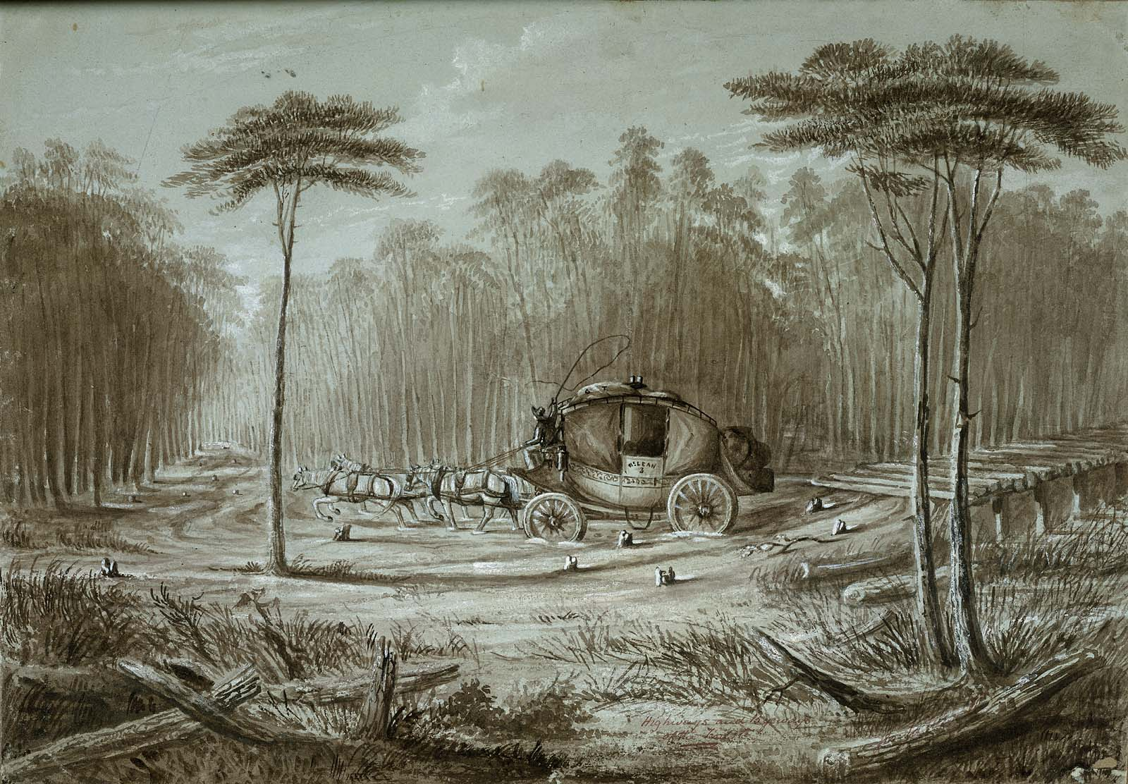 Album of Western Sketches: Highways and Byeways of the Forest, a ...