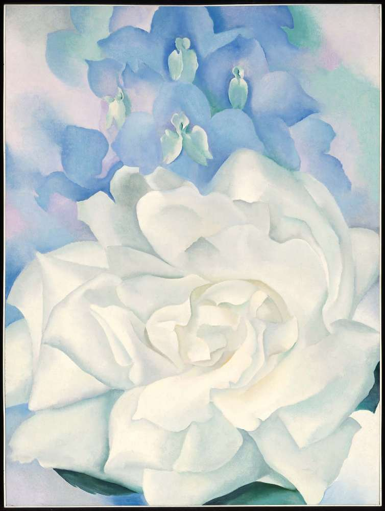 White rose with larkspur no 2 museum of fine arts boston white rose with larkspur no 2 1927 georgia okeeffe mightylinksfo