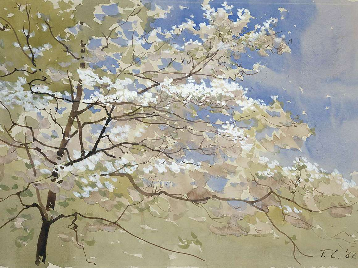 Frederic Crowninshield's watercolor, Spring Blossoms