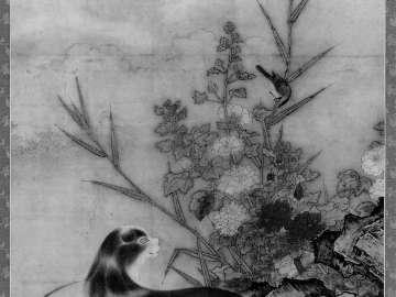 Civet, Birds, and Flowers