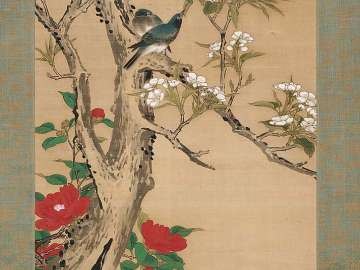 Camellias, Pear Blossoms, and Siberian Blue Robins