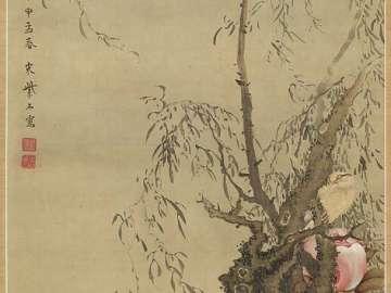 Willow, Flower, and Bird