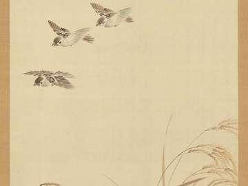 Sparrows, Rice, Sun
