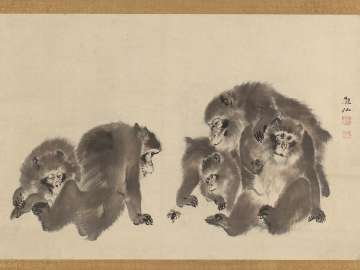 Monkeys with a Bee