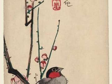 Red-cheeked Bird and Red Plum Blossoms