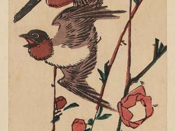 Swallows and Peach Blossoms