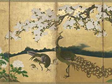 Cherry Blossoms and Peacocks