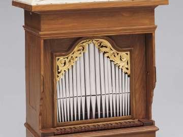 Organ (Positive)
