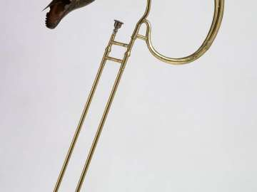 Tenor trombone (buccin)