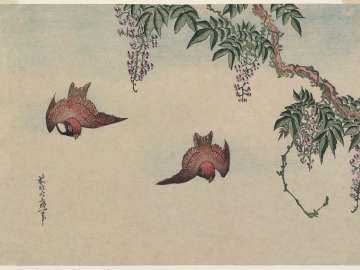 Sparrows and Wisteria