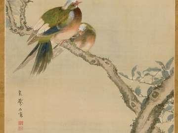 Tropical Birds on Flowering Cherry