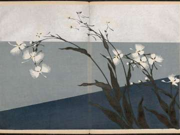 Shasei sôka môyô (Patterns of Plants and Flowers from Nature)