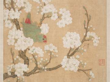 Parrot and insect among pear blossoms