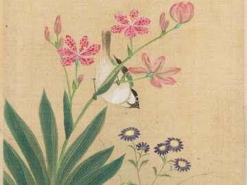 Album of Birds and Flowers