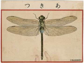 Dragon Fly from Ehagaki sekai