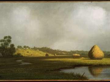 Salt Marshes, Newburyport, Massachusetts