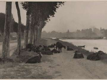 Pastoral Landscape with Goats (On the Seine, Near Paris)