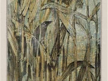 Reed Warbler (1907 Calendar: September)