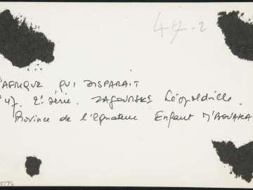 Province de l'Equateur  Enfant M'Bouaka | Museum of Fine