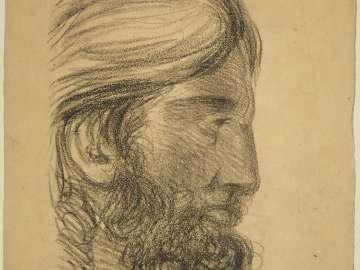 Head of  Bearded Man in Profile
