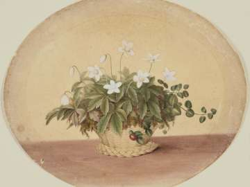 Basket of White Flowers and Partridge Berries