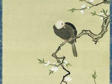 Bird Perched on White Peach Branch