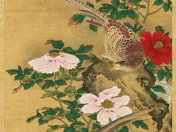 Pheasants and Peonies