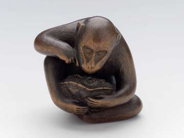 Monkey Clasping Turtle