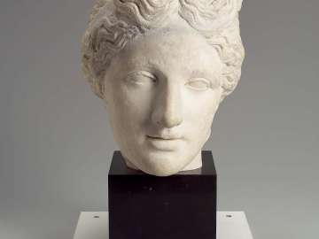 Head of Aphrodite of the Capitoline type