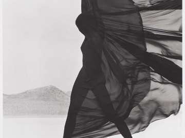 Versace Veiled Dress, El Mirage