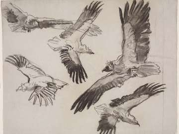 Sketch for Gog and Magog -  Vultures - Boston Public Library Murals