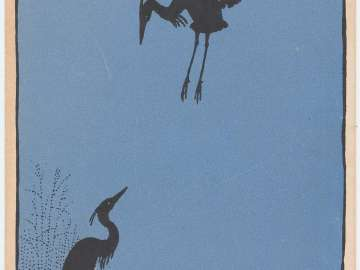 Shadowy Egrets from the series Mother Nature