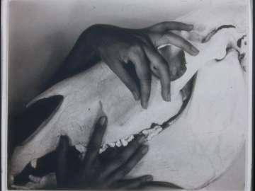 Georgia O'Keeffe: A Portrait (15)
